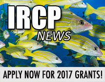 ircp_annonce_2017-grants-openv2