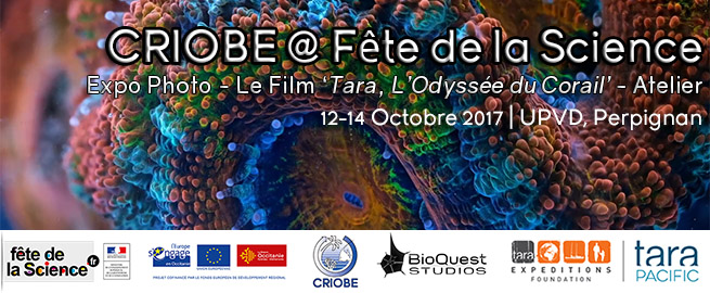 FeteScience_Annonce_2017