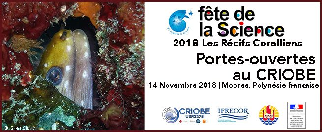 http://www.criobe.pf/wp-content/uploads/2018/11/FeteScience_Moorea_Annonce_2018-655x270.jpg