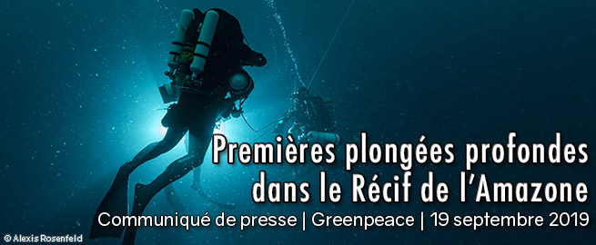 Greenpeace_Sept_ PressRelease_2019